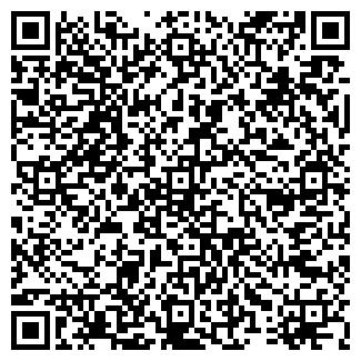 QR-код с контактной информацией организации ТЕО, ИП