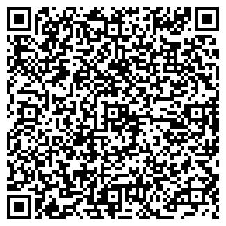 QR-код с контактной информацией организации Homeliness (Хоумлайнес), ИП