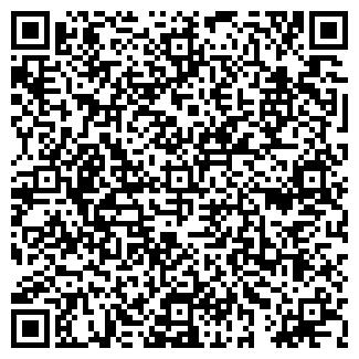 QR-код с контактной информацией организации Шин, ИП
