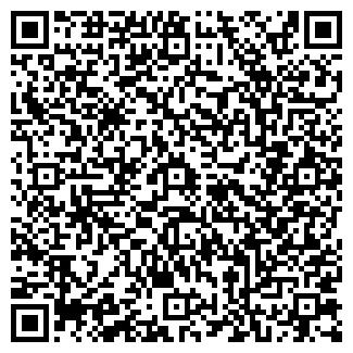 QR-код с контактной информацией организации ELVIS