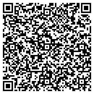 QR-код с контактной информацией организации Планум, ООО