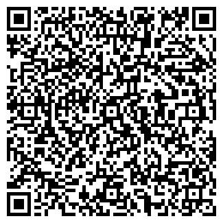 QR-код с контактной информацией организации Палади, ООО