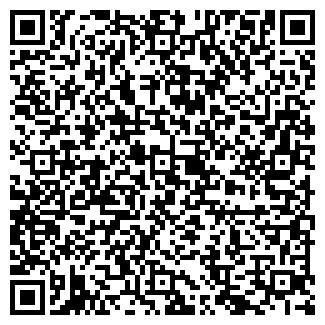 QR-код с контактной информацией организации SSV.ELEKTRONIKS