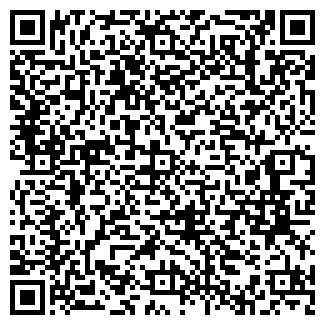QR-код с контактной информацией организации Paradise, ЧП