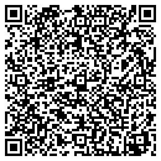QR-код с контактной информацией организации Электроинвест-2010, ЧП