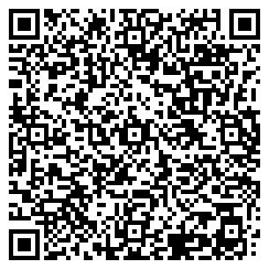 QR-код с контактной информацией организации СТВ Групп, ООО