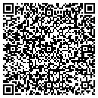 QR-код с контактной информацией организации Механика, ЧП