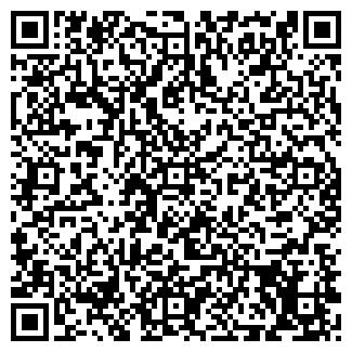 QR-код с контактной информацией организации Чесла, ООО