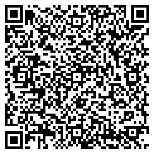 QR-код с контактной информацией организации Бореалис, ЧП