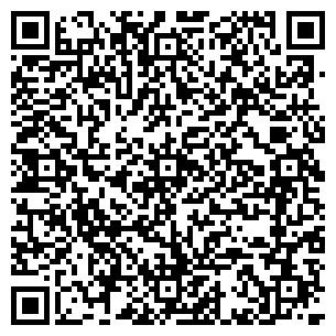 QR-код с контактной информацией организации Красители NEMO MB, ЧП
