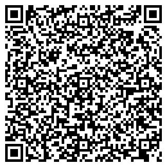 QR-код с контактной информацией организации Ивис, ЧП