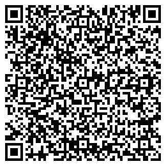 QR-код с контактной информацией организации Камо-Скрим, ООО