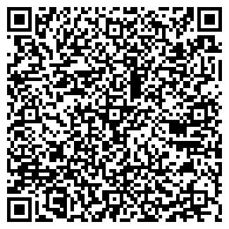 QR-код с контактной информацией организации Субъект предпринимательской деятельности Master+