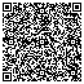 QR-код с контактной информацией организации ТБК ИВИС, ЧП