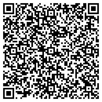 QR-код с контактной информацией организации Вибо(VIBO),ООО