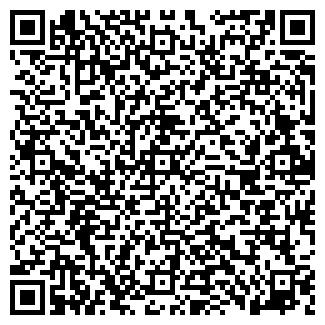 QR-код с контактной информацией организации Довгун, ЧП