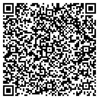 QR-код с контактной информацией организации Батискаф, ООО