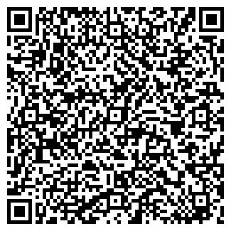 QR-код с контактной информацией организации Ignis, ТОО