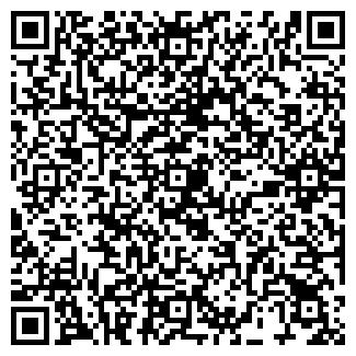 QR-код с контактной информацией организации Динара, ИП