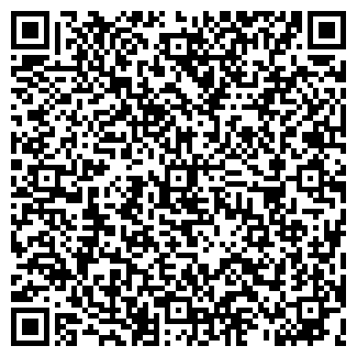 QR-код с контактной информацией организации Васте, ТОО