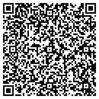 QR-код с контактной информацией организации Чернышев, ИП