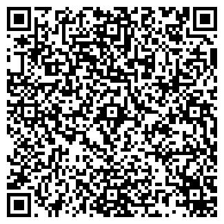 QR-код с контактной информацией организации Boreline, ИП