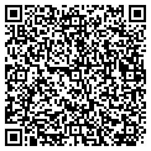 QR-код с контактной информацией организации Фина 2007, ЧП