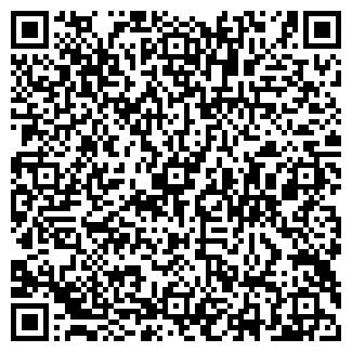 QR-код с контактной информацией организации Торсвик, ЧП