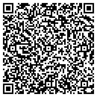 QR-код с контактной информацией организации Промышленная Группа ViОil (ВиОйл)