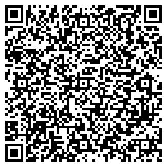 QR-код с контактной информацией организации SatLife, ЧП