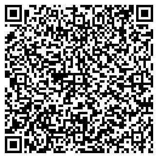 QR-код с контактной информацией организации СТЕЛСИ, ООО