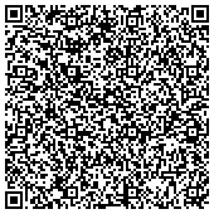 QR-код с контактной информацией организации Питомник британских шиншилл колор-поинтов и шотландских кошек,ЧП ( CASTELLO ROSSI)