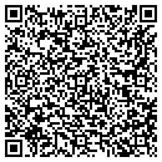 QR-код с контактной информацией организации ИП Чистяков С.В.