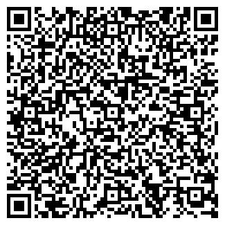 QR-код с контактной информацией организации Анабис, ИП