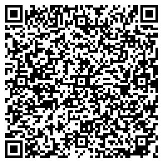 QR-код с контактной информацией организации Ферзь, ООО
