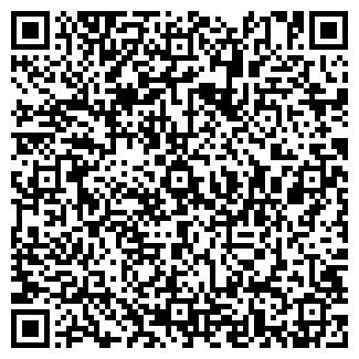 QR-код с контактной информацией организации NetSite, ЧП