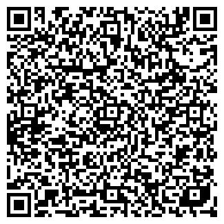 QR-код с контактной информацией организации НОВОЕ ИМЯ