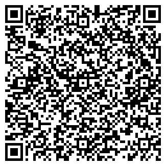 QR-код с контактной информацией организации DreamTeam, ЧП