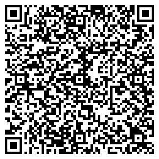 QR-код с контактной информацией организации Нетассист, ООО