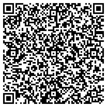 QR-код с контактной информацией организации WebDev, ЧП