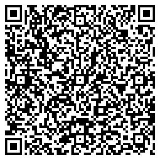 QR-код с контактной информацией организации Проба, ИП