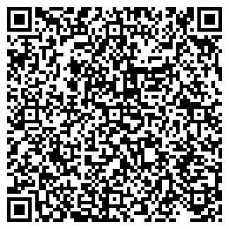 QR-код с контактной информацией организации Fenix, ЧП