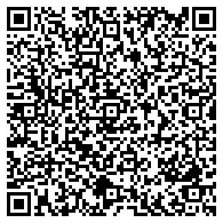 QR-код с контактной информацией организации Wit (Вит), ТОО