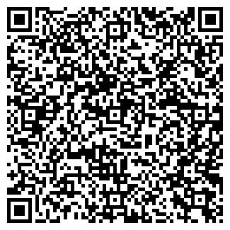 QR-код с контактной информацией организации Megaline, ТОО