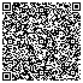 QR-код с контактной информацией организации Megstudio (Мегстудио), ИП