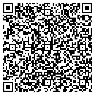 QR-код с контактной информацией организации Msoft, ИП