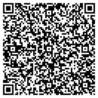 QR-код с контактной информацией организации Каминский, ЧП