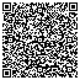 QR-код с контактной информацией организации ИП Аренда самосвала