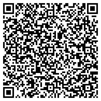 QR-код с контактной информацией организации В. В. В., ООО