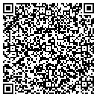 QR-код с контактной информацией организации ВИНИСИН, ЧП